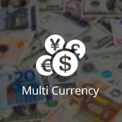 Multi-Currency feature- logo