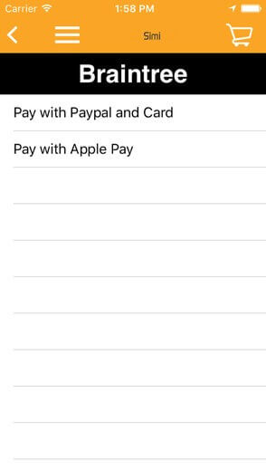 Apple Pay Feature - Pay with Apple Pay