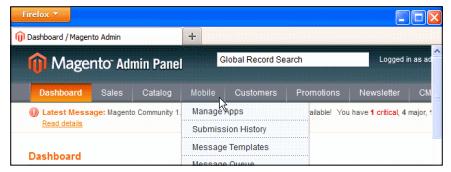 Magento mobile login - Magento mobile admin