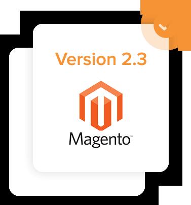 Magento 2.3 version